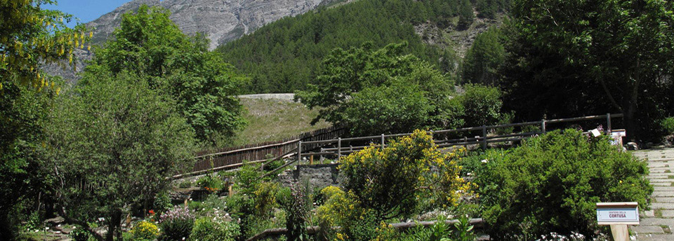 Rete Orti Botanici Lombardia