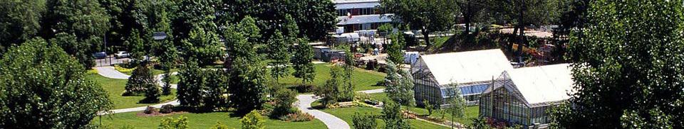 Orto botanico citt studi milano rete orti botanici for Giardino botanico milano