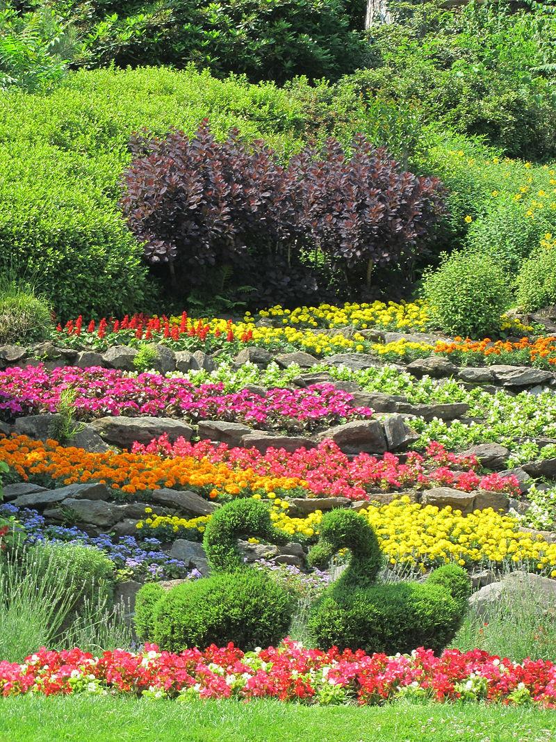 Wikilovesmonuments rete orti botanici della lombardia for Giardino botanico milano